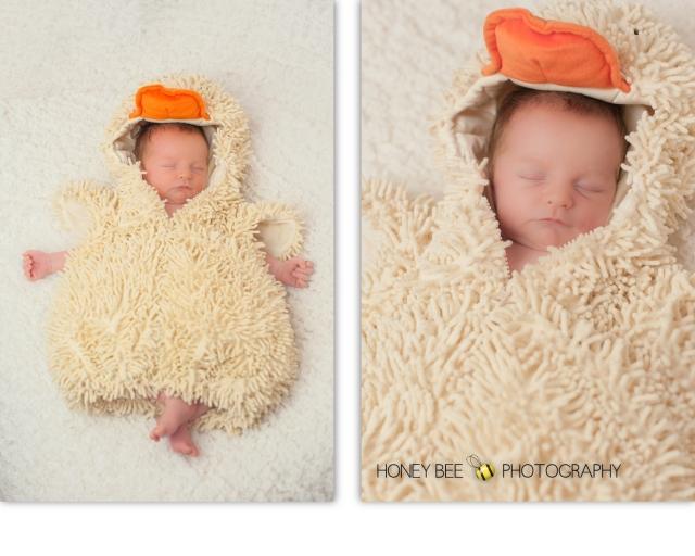 Brisbane Family | Children | Newborn | Maternity Photography | Babies | Cute | Props | Duck