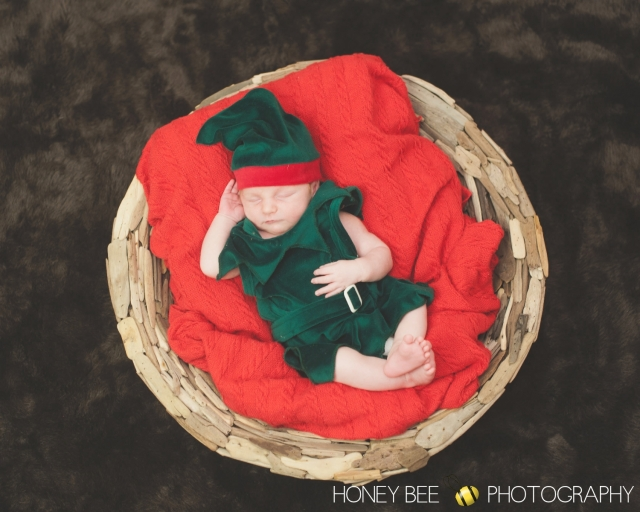 Brisbane FaBrisbane Family | Children | Newborn | Maternity | Wedding Photography | Babies | Cute  | Christmas Elf
