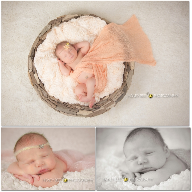 Brisbane Family | Children | Newborn | Maternity | Wedding Photography | Studio | Bowl| Beanies | Props | Tattoos